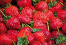 Δέσμευση φράουλας χωρίς σήμανση στον Πειραιά