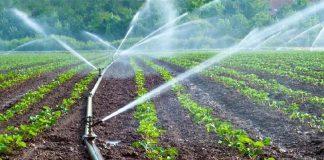 Λύση στο πρόβλημα της άρδευσης των αγροτικών περιοχών επιχειρεί να δώσει η Περ. Στ. Ελλάδας