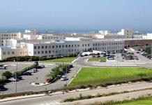 Τμήμα Κτηνιατρικής διεκδικεί το Δημοκρίτειο Πανεπιστήμιο Θράκης