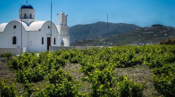 Ένατη η Ελλάδα στην παραγωγή κρασιού για το 2018