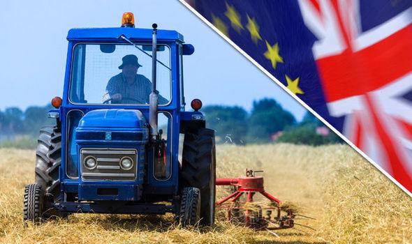 Μεγάλη Βρετανία: Συντονισμό και μετεκλογική ενότητα ζητούν οι αγροτικές οργανώσεις