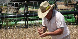 Στον ΕΦΚΑ τα ειδοποιητήρια με τις εισφορές Μαϊου για τους αγρότες