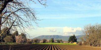 Επιπλέον μοριοδότηση στους συνεταιρισμούς για το πρόγραμμα αγροτικών γαιών του ΥπΑΑΤ