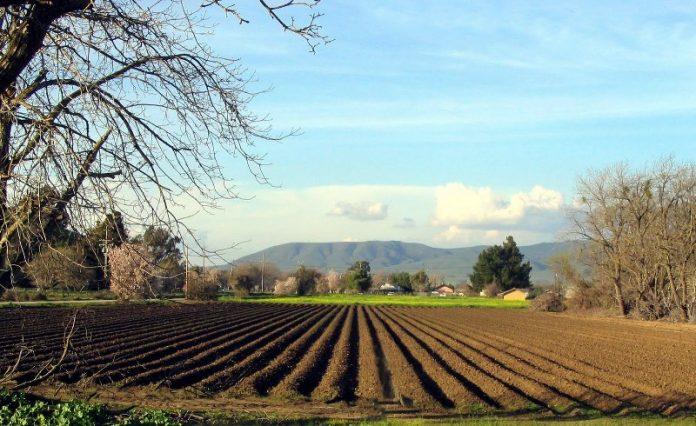 Μεγάλες αλλαγές στην παραχώρηση αγροτικών εκτάσεων από το ΥΠΑΑΤ