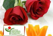Εκλογές στον Αγροτικό Ανθοκομικό Συνεταιρισμό Φυτωριούχων Αχαρνών Αττικής