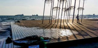 Ένα δελφίνι από… πλαστικά «ξέβρασε» η θάλασσα στη Θεσσαλονίκη