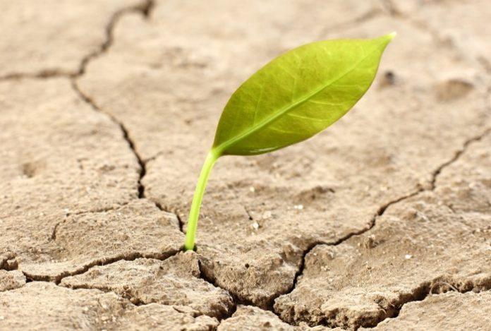 Έρευνα ComAgri: Η ΕΕ στερείται συμπαγούς πλαισίου πολιτικής για την προστασία του εδάφους