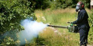 Θεσσαλονίκη: Μείωση της όχλησης από τα κουνούπια τις επόμενες μέρες
