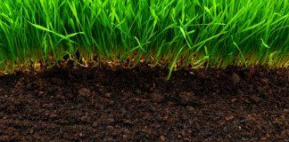 Η λίπανση των εδαφών και των καλλιεργειών στην αρχαία Ελλάδα
