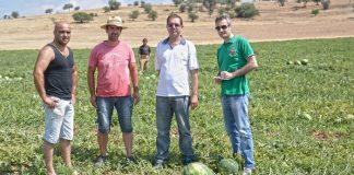 Σειρά για τα Θεσσαλικά καρπούζια και πεπόνια που βγαίνουν στην αγορά