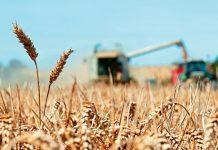 Συμμαχία για κοινές αγορές από προμηθευτές δημιουργούν Carrefour και Tesco
