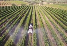Τιμολόγηση με κανόνες και για τα αγροεφόδια