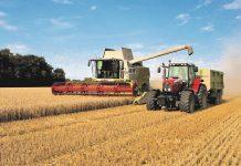 Ξηρασία και ειδικό βάρος κρίνουν φέτος την τιµή στο σκληρό σιτάρι