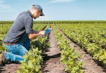 Πλήρωσε 3 εκατ. ευρώ σε νέους αγρότες και αναδιαρθρώσεις αμπελώνων ο ΟΠΕΚΕΠΕ