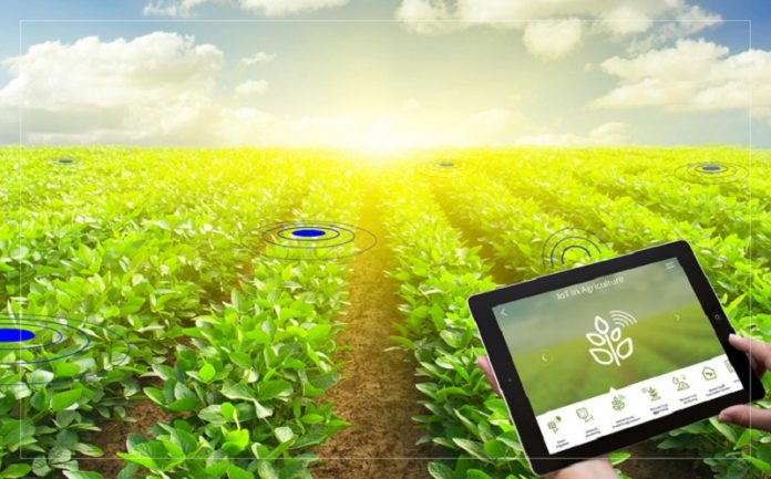 Capsella Acceleration Programme: Δήλωσε συμμετοχή για την ανάπτυξη καινοτόμων λύσεων για τον αγροδιατροφικό τομέα