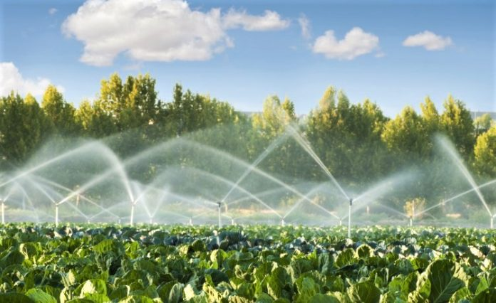 Μέχρι το 2024 η εγκατάσταση των μετρητών για το αρδευτικό νερό