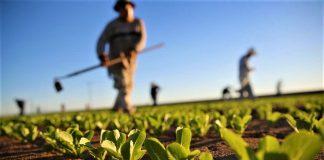 Νέες προσλήψεις στο Υπουργείο Αγροτικής Ανάπτυξης στην Αττική