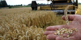 Ομοβροντία της αξιωματικής αντιπολίτευσης κατά ΥπΑΑΤ για τους σιτοπαραγωγούς
