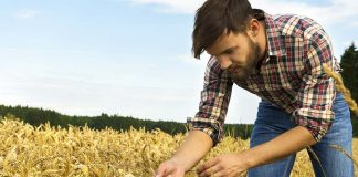 Έγκριση πίστωσης 8,9 εκατ. ευρώ για τους επιλαχόντες Νέους Αγρότες της Κεντρικής Μακεδονίας