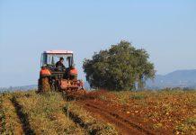 Κριτήρια ένταξης για την ανάπτυξη μικρών γεωργικών εκμεταλλεύσεων