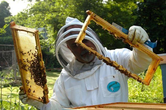 Στην Κοζάνη το Μελισσοκομικό Κέντρο Δ. Μακεδονίας