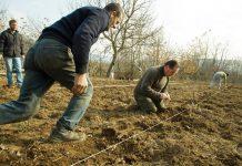 Γ. Καρασμάνης: Λύσεις και όχι λόγια για τους αγρότες της Κεντρικής Μακεδονίας