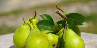 Αχλάδια: Η καλή ποιότητα θα δώσει ώθηση στις αγορές