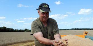 Η εξαγωγική απραξία τεστάρει τις αντοχές στο σκληρό σιτάρι