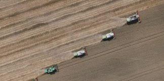 Η μεγαλύτερη «φάρμα» της Ευρώπης βρίσκεται στη Ρουμανία
