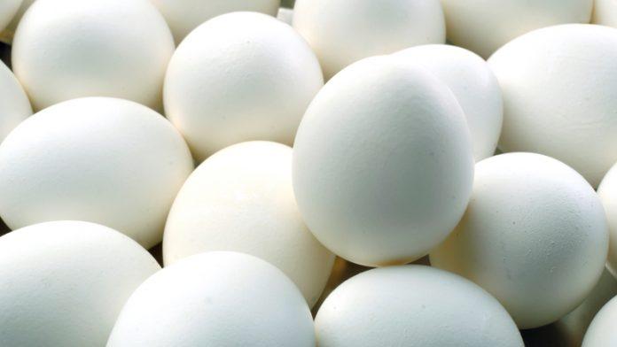 Ολλανδία-Μολυσμένα αυγά: Ελέγχους στο κρέας των πουλερικών πραγματοποιεί η Ολλανδία
