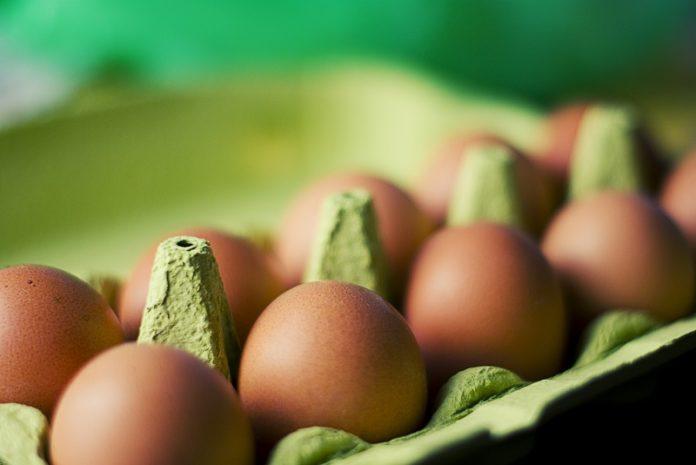 Ολλανδία-Μολυσμένα αυγά: Η παρουσία του fipronil ήταν γνωστή από τον Νοέμβριο 2016