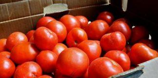 Δέσμευση 2,5 τόνων ντομάτας χωρίς σήμανση στον Πειραιά