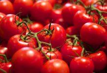 Καθησυχαστική η Κομισιόν για τις μαροκινές εισαγωγές ντομάτας
