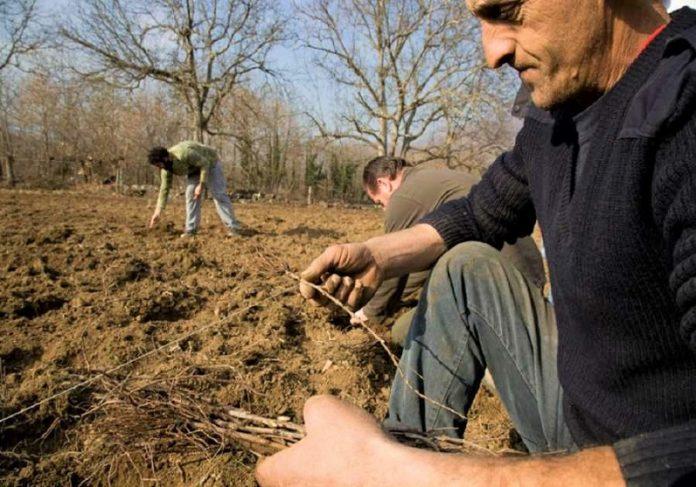 ΚΚΕ: Μη δώσετε πάλι ψίχουλα στους αγρότες της Σαμοθράκης