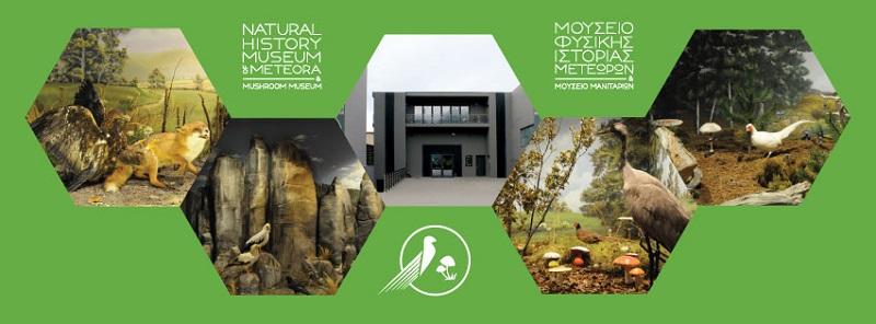 Το Μουσείο Φυσικής Ιστορίας Μετεώρων και Μανιταριών διοργανώνει την 3η Γιορτή Μανιταριού