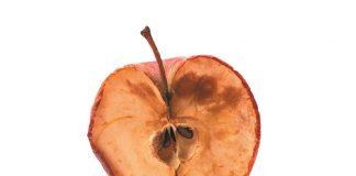 Νέο εργαλείο για την ανίχνευση της σήψης του μήλου