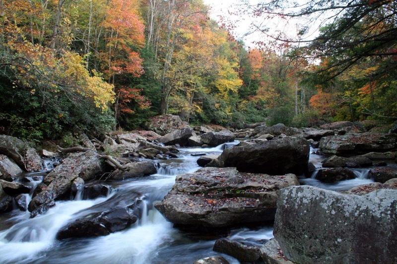 Φθινόπωρινές εξορμήσεις στη Ροδόπη και στο παρθένο δάσος του Φρακτού