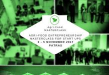 Σε «οικοσύστημα» νεοφυών επιχειρήσεων μετατρέπεται η Πάτρα