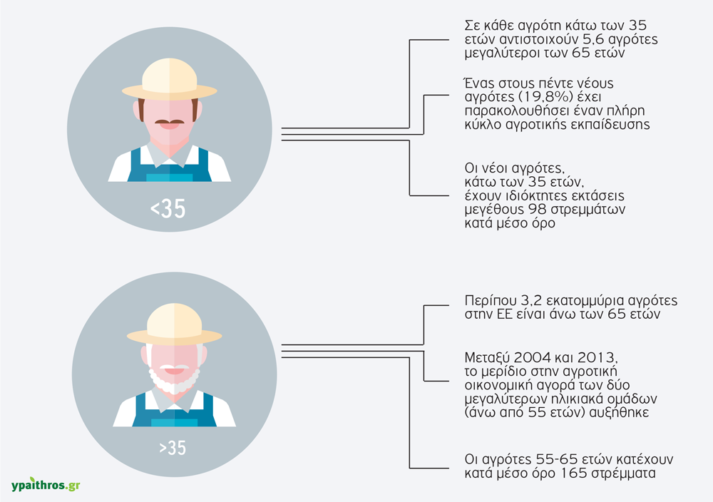 neoi-agrotes-infographic