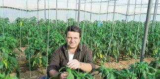 Συνεχής προσπάθεια εφαρμογής καινοτόμων καλλιεργητικών πρακτικών και χρήση ευφυούς γεωργίας