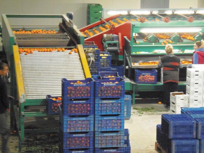 Αργολίδα: Βιολογικό συσκευαστήριο για αποστολές στην Ελβετία