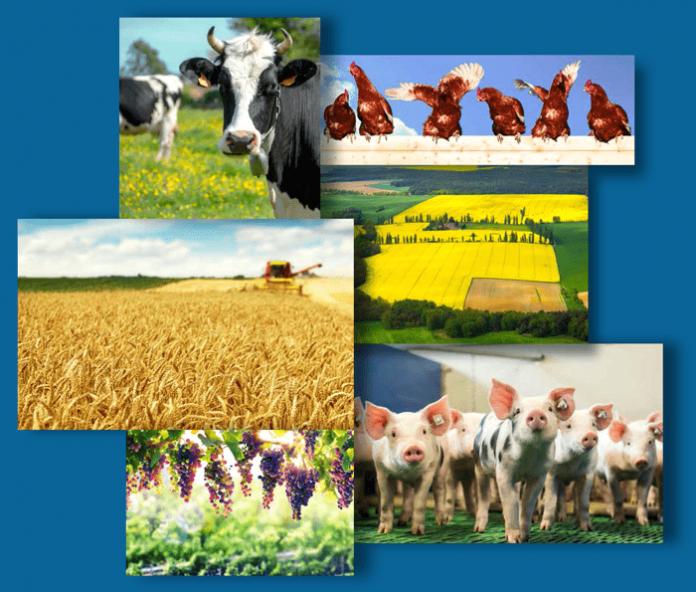 Προβλέψεις Κομισιόν 2017-2030: Χάνετε το 1/3 του αγροτικού