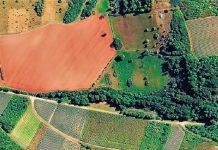Δασικοί Χάρτες:Ξεκαθαρίζουνοι καλλιεργούµενες εκτάσεις