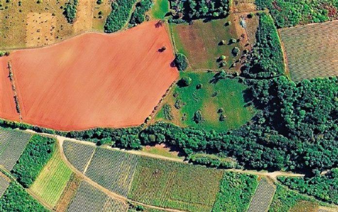 Δήμος Λεβαδέων:  Αναρτήθηκε ο θεωρημένος δασικός χάρτης περιοχών κοινοτήτων της Π.Ε. Βοιωτίας