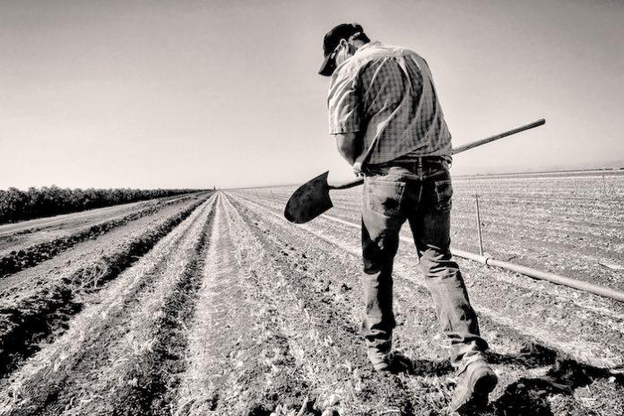 Μειώνεται ανησυχητικά ο αριθμός των αγροτών στην ΕΕ