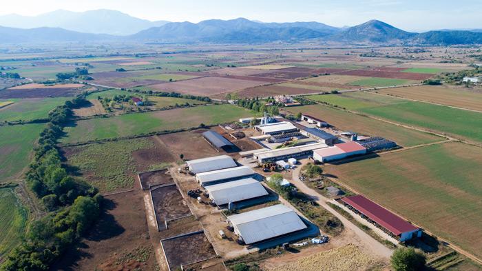 Η Δραμινή εταιρεία ΝΕΟΓΑΛ ιδρύθηκε το 1964 και συνεργάζεται με περισσότερους από 150 αιγοπροβατοτρόφους και 50 αγελαδοτρόφους.