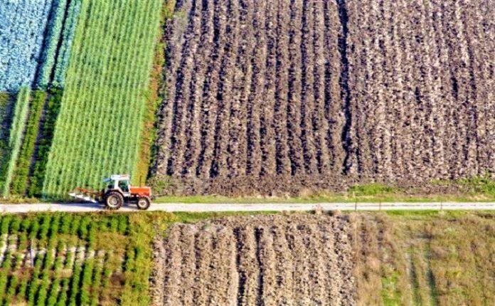 Από τις 26/1 πιάνουν δουλειά οι επιτροπές αντιρρήσεων δασικών χαρτών στην ΠΕ Ιωαννίνων