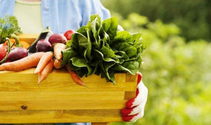 Κομισιόν: Ημερίδα για προγράμματα προώθησης αγροτικών προϊόντων - Χρηματοδότηση 75-85%