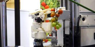 robot-sigkomidi-ntomata