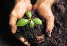 To λίπασμα «ΓΑΙΑ ΑΤΤΙΚΗΣ» από βιοαπόβλητα παράγει πλέον η Περιφέρεια Αττικής